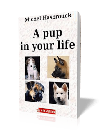 A Pup in Your Life – Michel Hasbrouck (translated by Jean Gill)